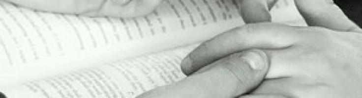 RECUPERACION EN TRES NIVELES – Comedores Compulsivos ...