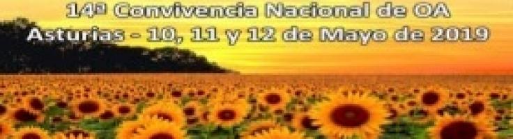 14ª CONVIVENCIA NACIONAL DE OA EN ASTURIAS – Comedores ...